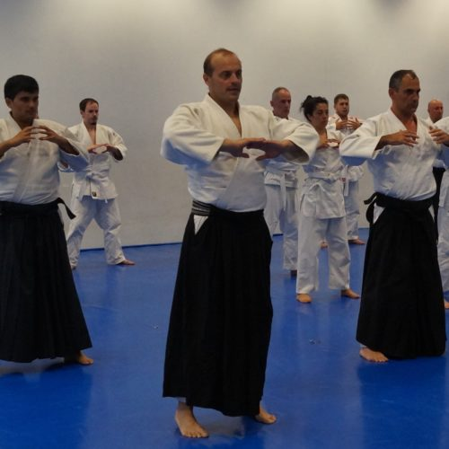 Aikido Julio 18 1