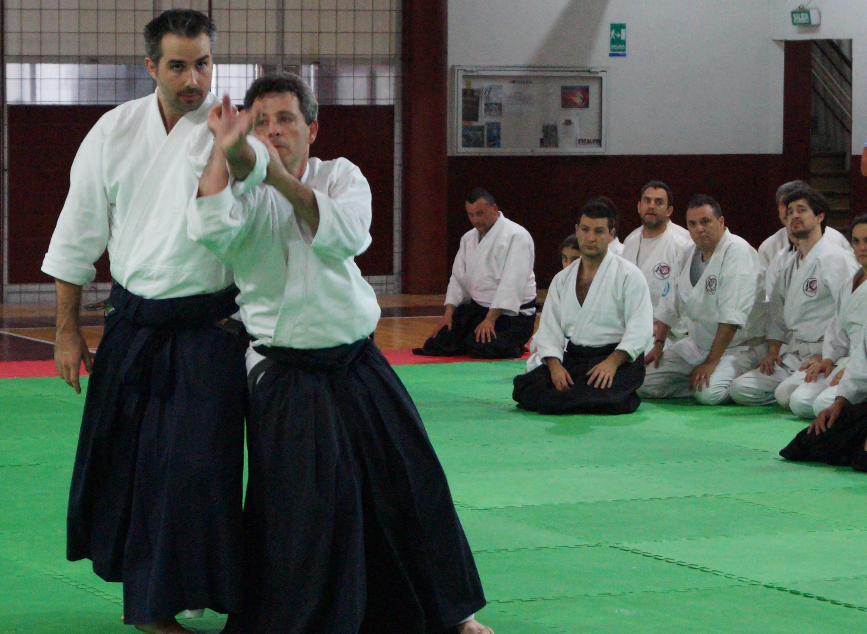 Aikido Taikai 2014 (2)