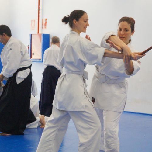 Aikido Julio 18 10