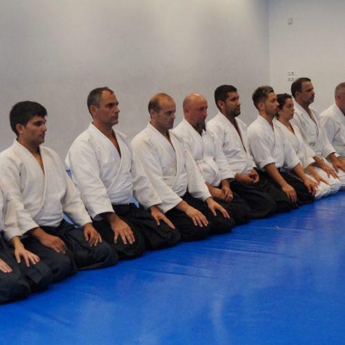 Aikido Julio 18